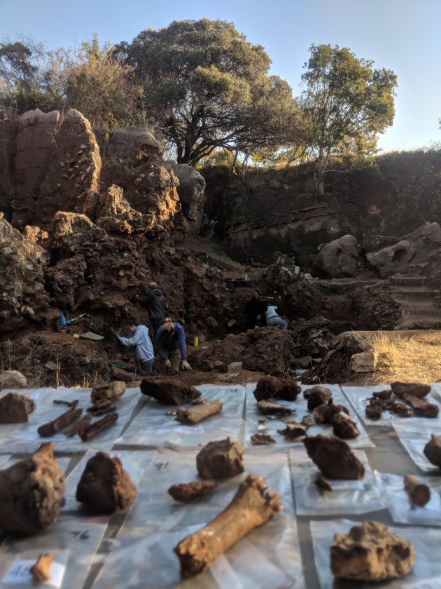 Fossils being sorted at Drimolen cave, north of Johannesburg in South Africa