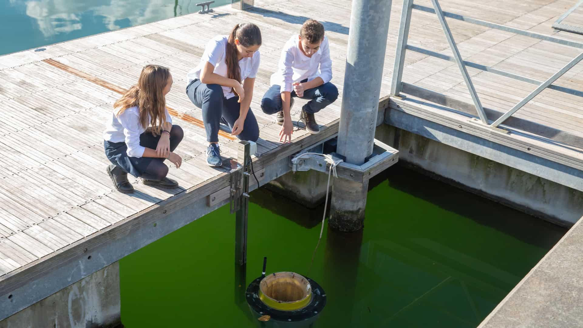 How Seabin is helping clean the oceans of plastic waste