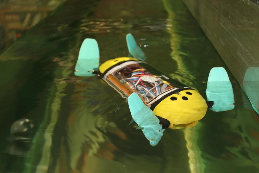 U-CAT was initially designed to explore shipwrecks