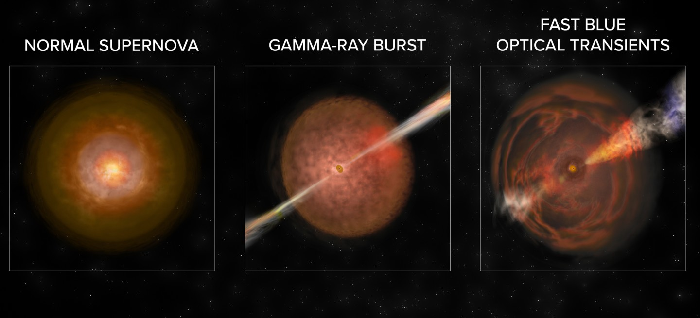 FBOTs have different signal features to supernovae and gamma ray bursts