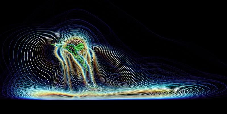 Computer simulation of mosquito aerodynamics