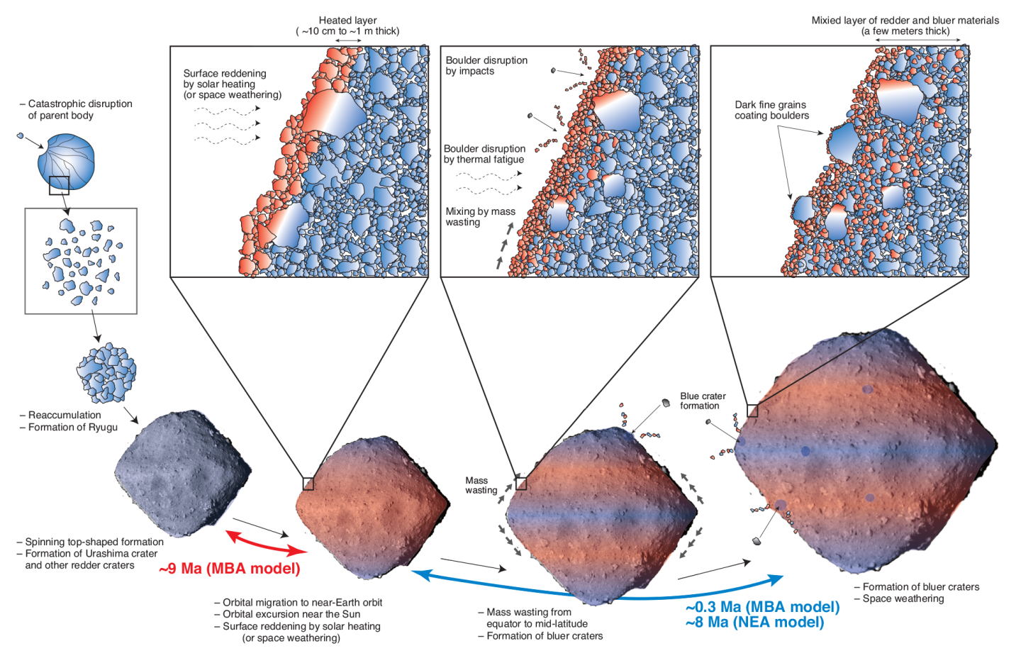 Diagram depicting the evolution of asteroid Ryugu