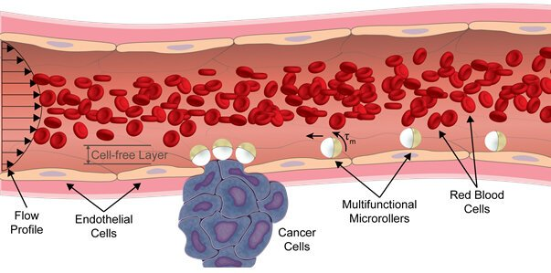 A diagram showing how the new micro-robots would move through the bloodstream, and deliver drugs automatically to cancer cells they encounter