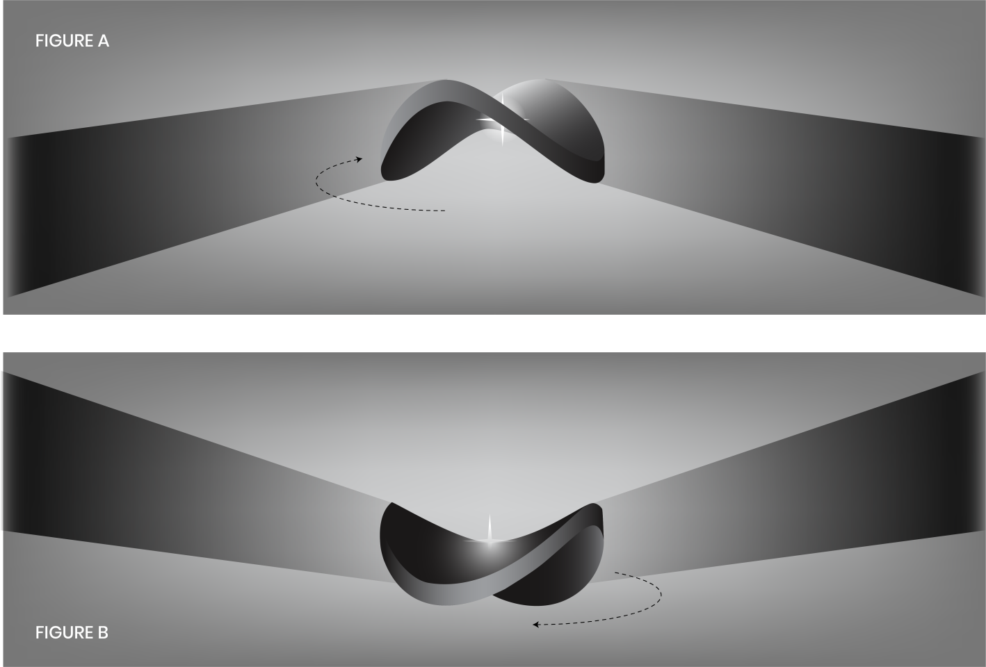 A schematic of the saddle-shaped disk, and how it could create the flapping wing shadows
