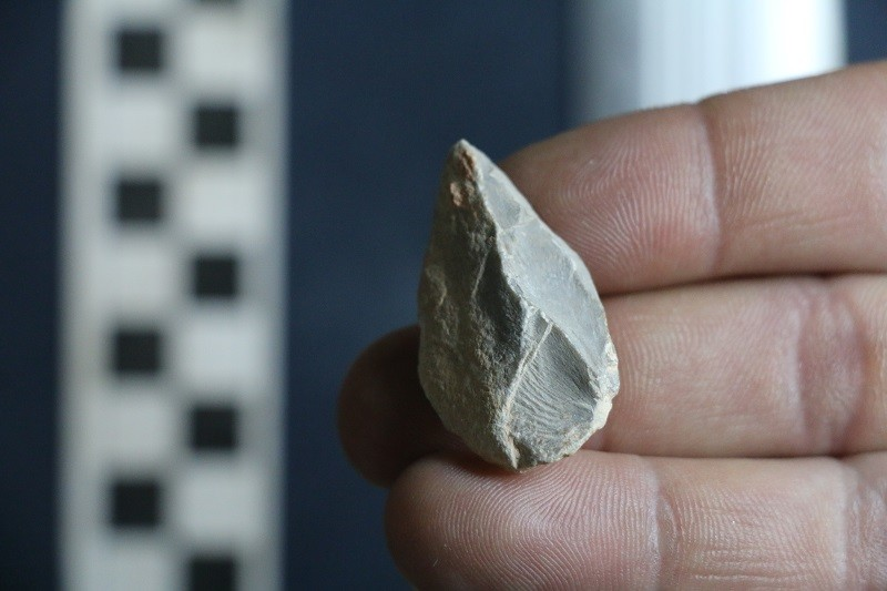 A pointed stone tool, found in Chiquihuite Cave in Mexico, which was dated to between 25,000 and 30,000 years ago