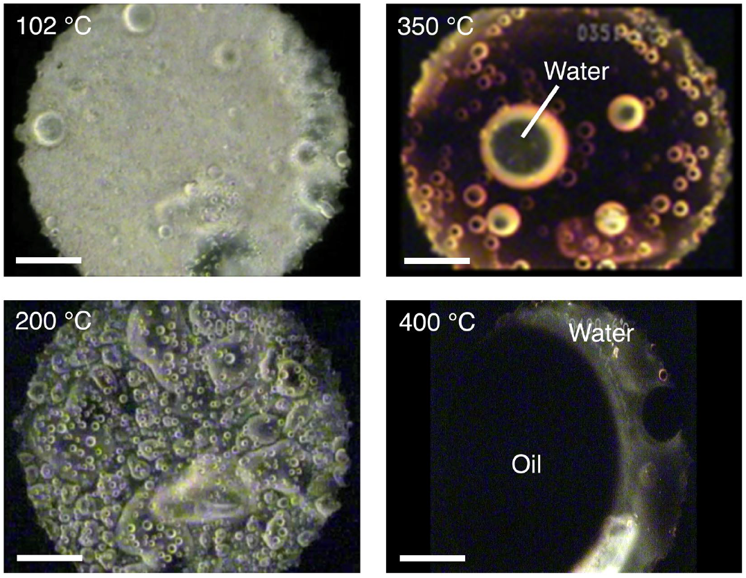 The state of water and oil production in the organic matter analog at different temperatures