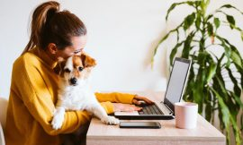 The 20 most popular work-from-home jobs and what they pay