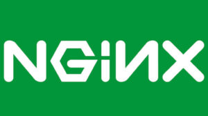 How to limit file upload size on NGINX to mitigate DoS attacks