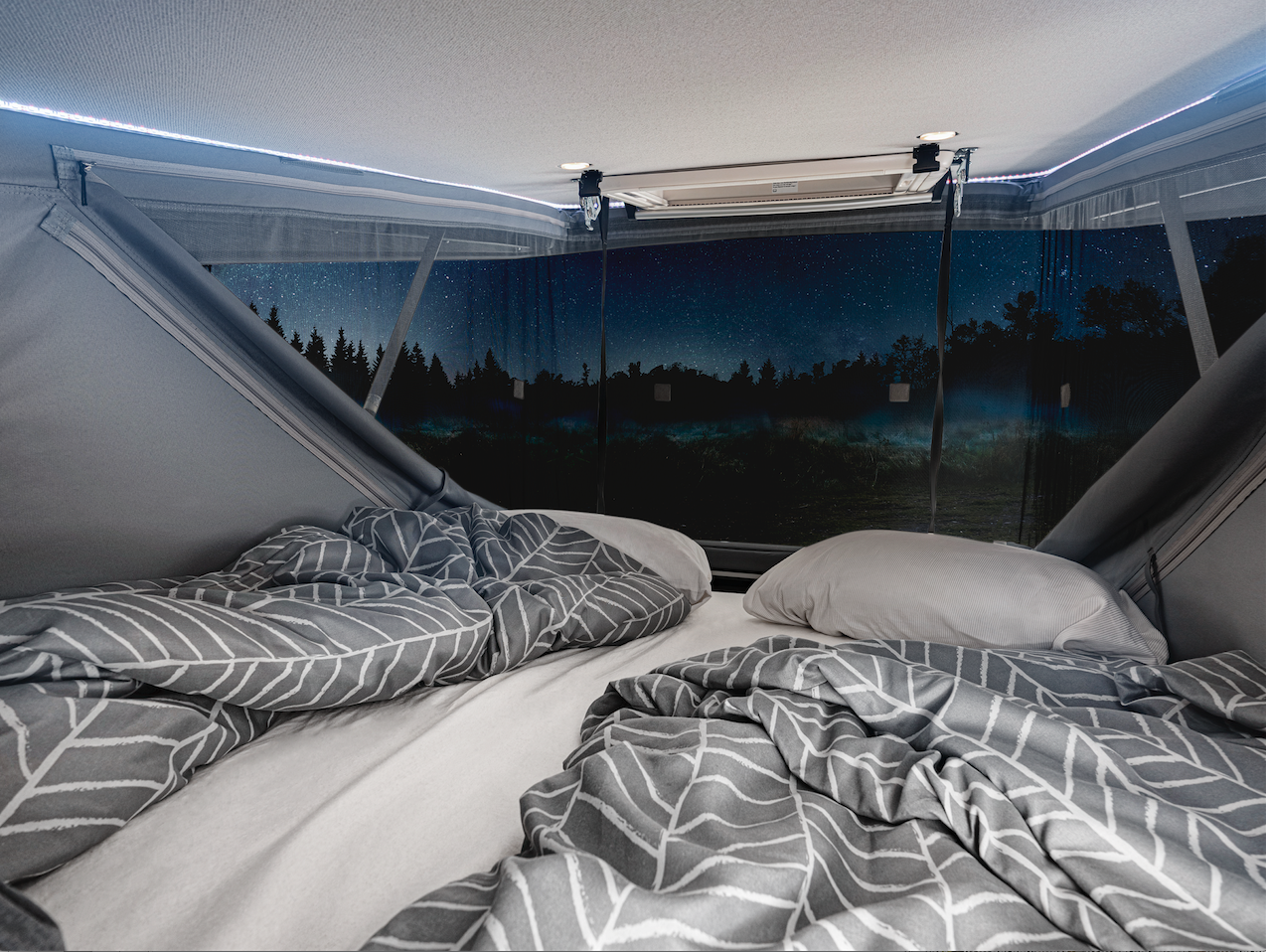 Enjoy a panoramic view of the star-filled night sky