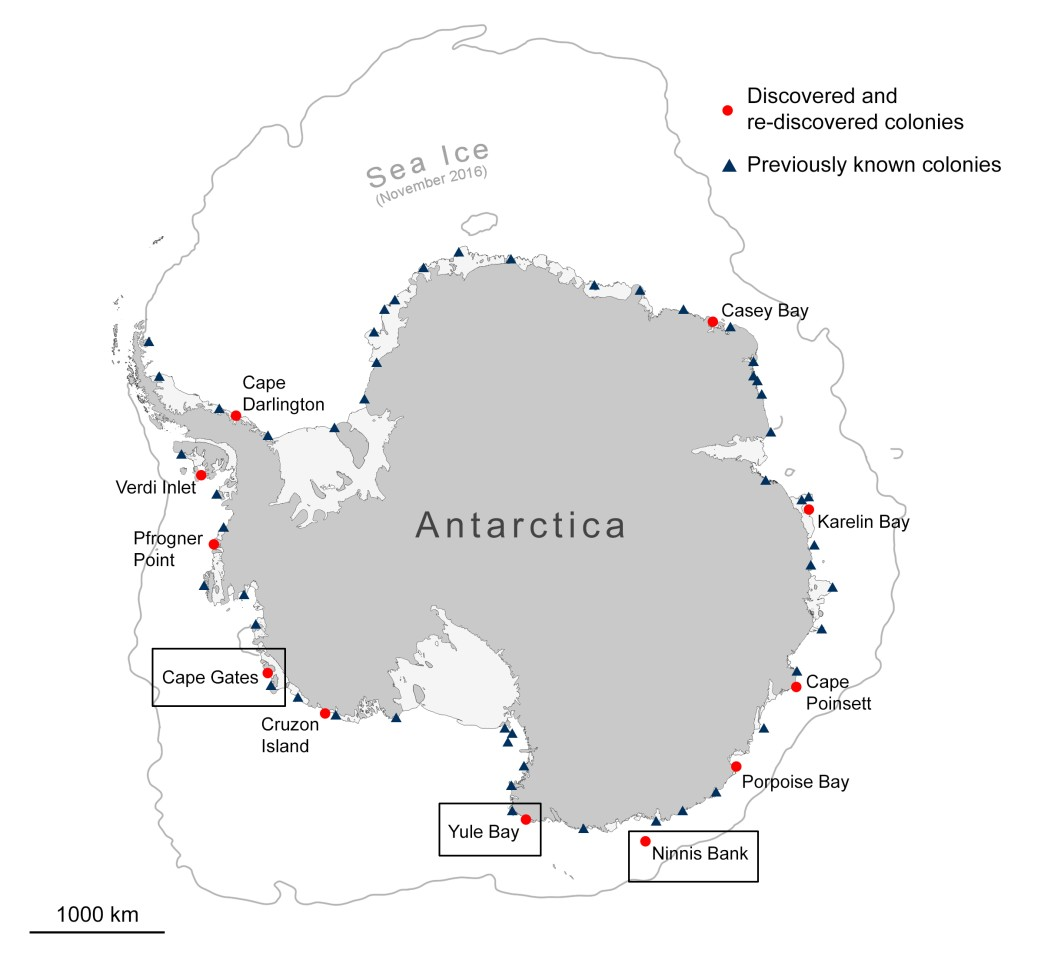 Locations of new and previously known emperor penguin colonies