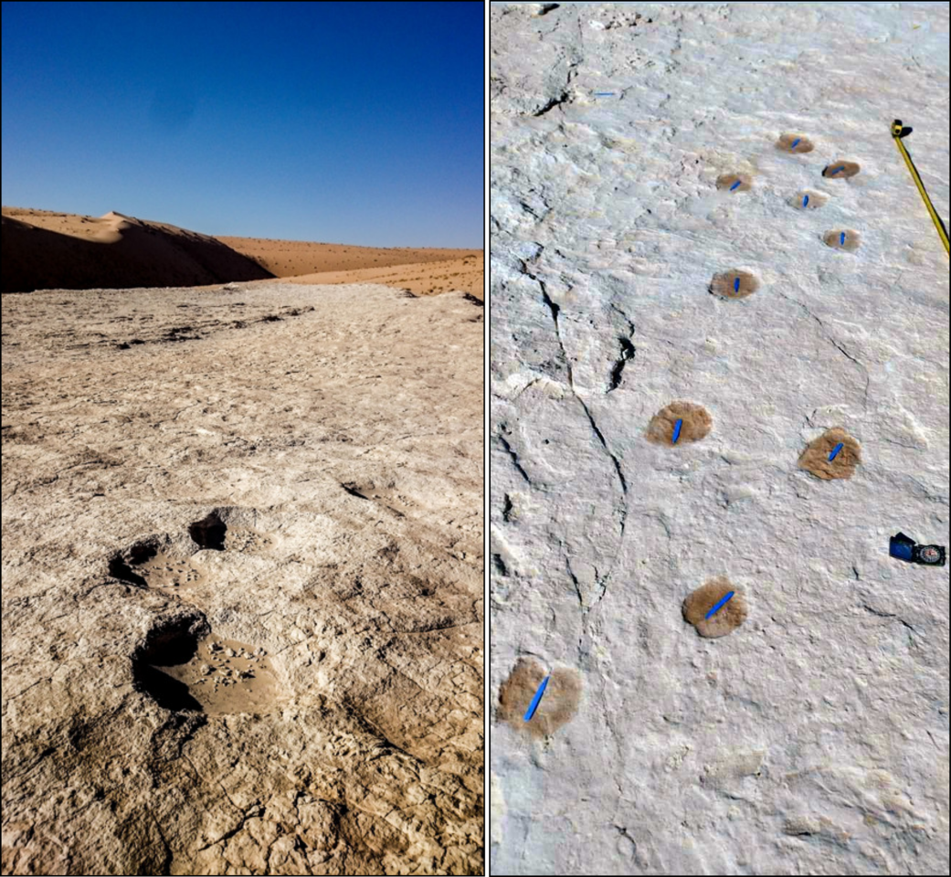 The fossilized footprints were dated to 120,000 years ago