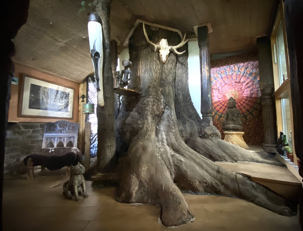 The Bedouin Tree Shed is built around the trunks of an Ash and an Evergreen Oak