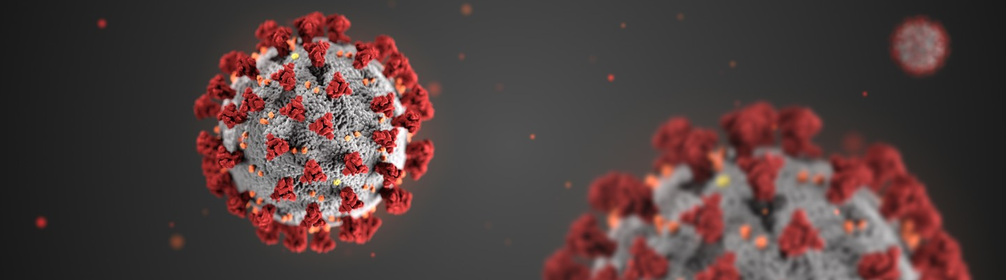 3D rendering of SARS-CoV-2 is shortlisted in the Graphics category. The project was created by Alissa Eckert (MSMI) and Dan Higgins (MAMS) and was commissioned to help raise public awareness about the dangers of COVID-19