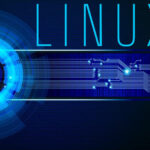 Read more about the article Linux mount command: This is how to use it